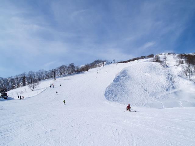白馬八方尾根スキー場のゲレンデ